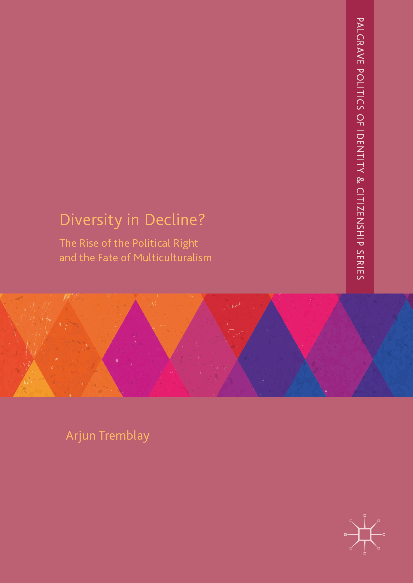 Diversity in Decline book cover
